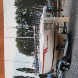 Boot auf Hänger Inserat